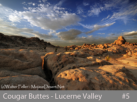 lucerne valley cougar women Latest local news for lucerne valley, ca : lucerne valley, california is located in san bernardino countyzip codes in lucerne valley, ca include 92356.